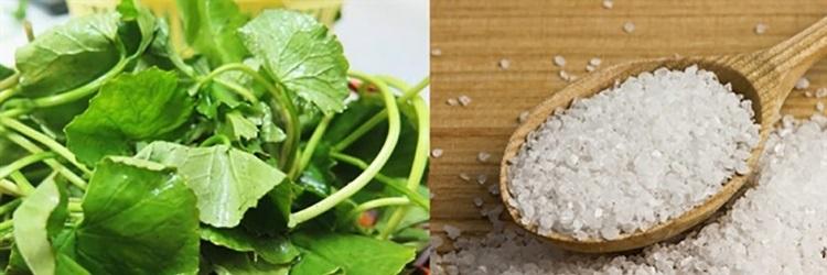 [Bật mí] 7+ cách làm đẹp siêu hiệu quả với rau má 10