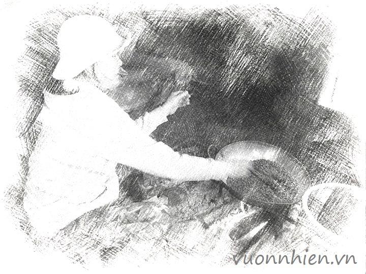 Bột ngũ cốc Đà Nẵng - Đậu quê, rang mộc 3