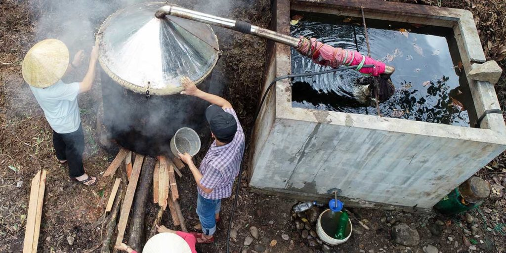 Tinh dầu tràm Đà Nẵng - Thượng hạng 2