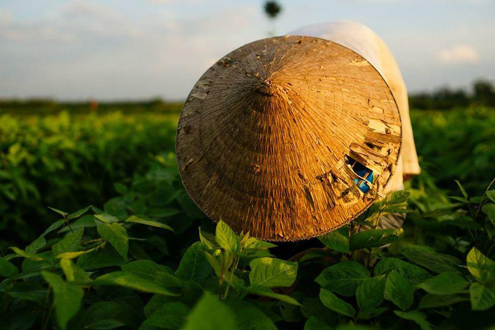 Địa chỉ xay bột ngũ cốc ở Đà Nẵng - Tự chọn, xay tại chỗ 2