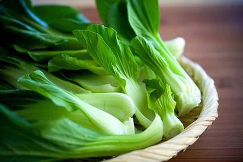 Rau cải thìa có tác dụng gì?