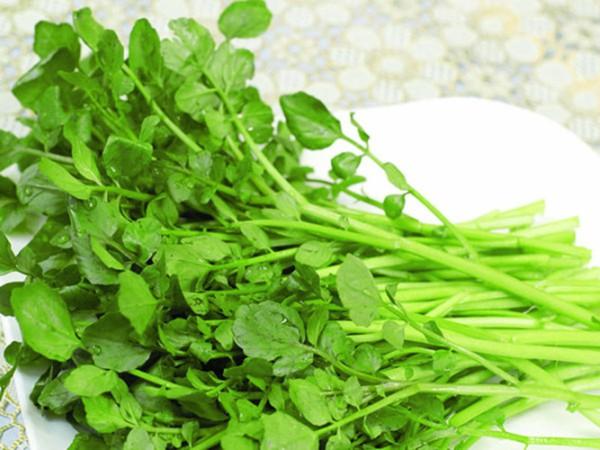 """Tác dụng của rau xà lách xoong khiến loài rau này được mệnh danh là """"thần dược của người nghèo"""""""