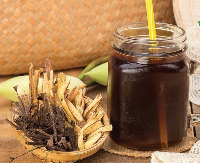 Uống trà nhân trần có tác dụng gì