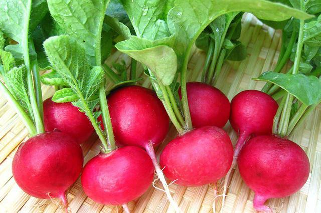 Củ cải đỏ và củ dền có giống nhau không?